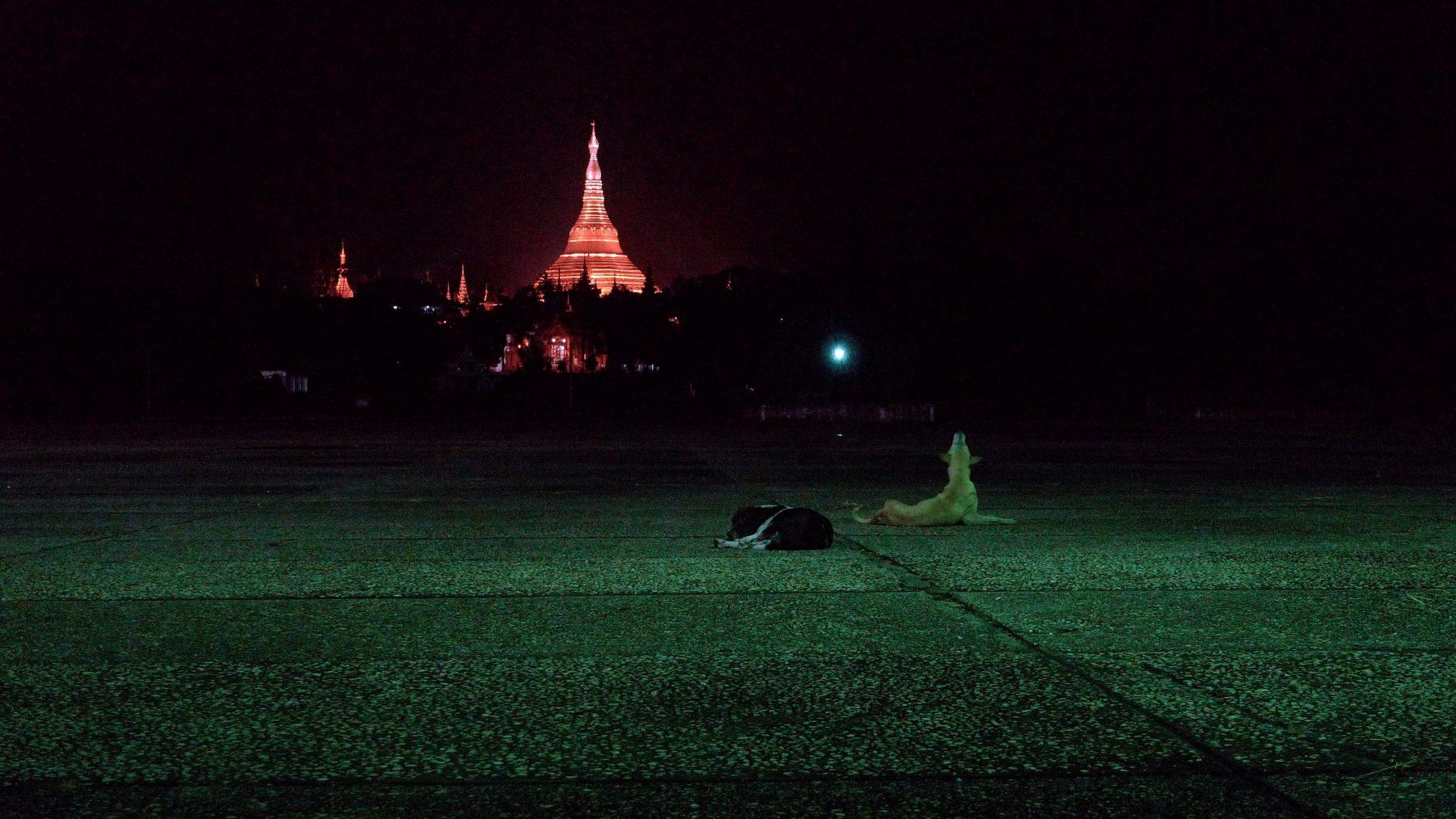 Image: Yangon Midnight